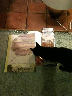 Completed Book Club + Cat